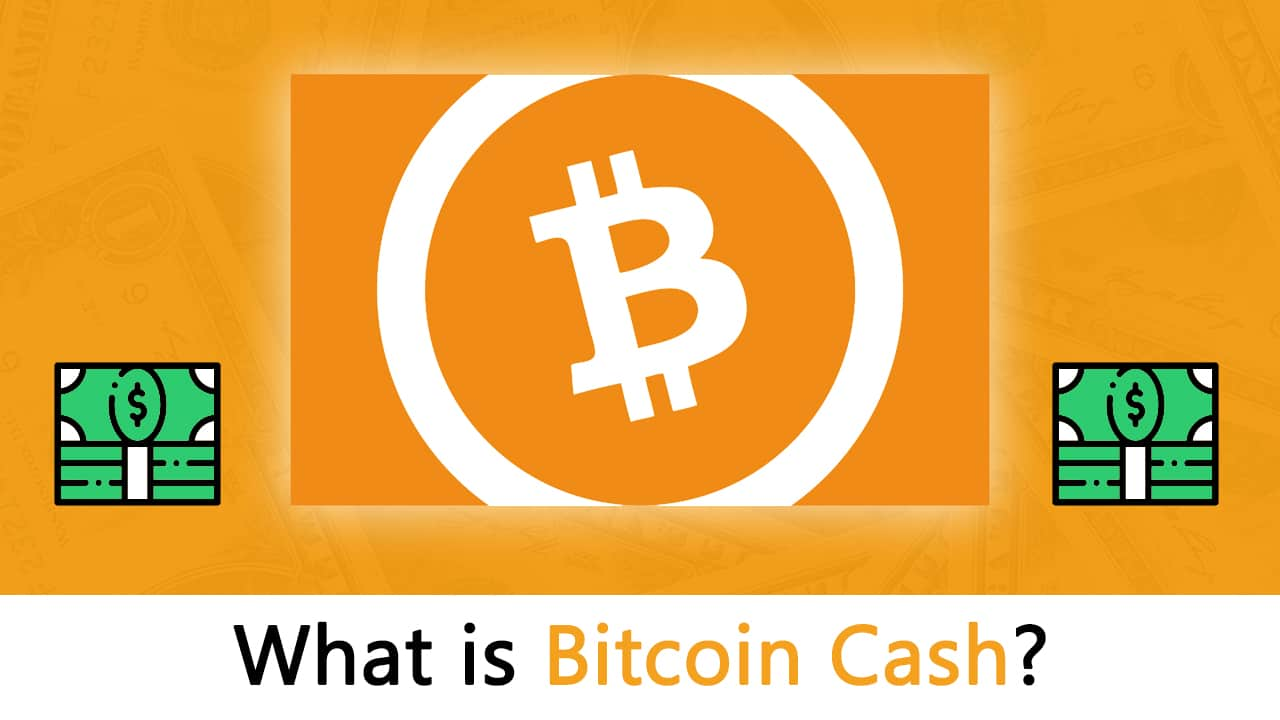 What is Bitcoin Cash? A Guide for Beginners
